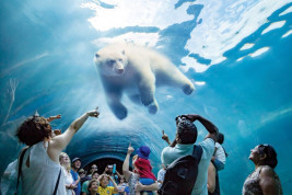 9 great activities in Winnipeg before you head north to Churchill
