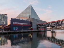 The 9 Best Aquariums in the United States